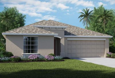 10226 Strawberry Tetra Drive Riverview FL 33578