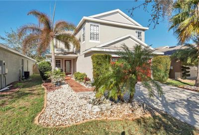 11337 Cocoa Beach Drive Riverview FL 33569