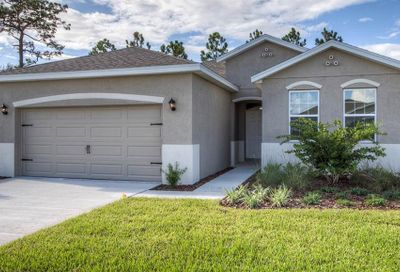 31710 Tansy Bend Wesley Chapel FL 33545
