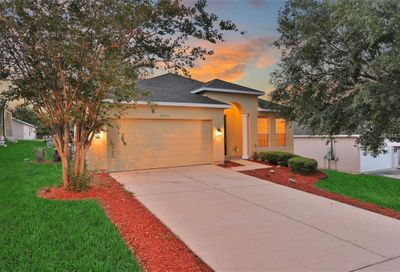 25233 Chipshot Court Mount Plymouth FL 32776