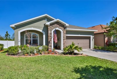 11862 Frost Aster Drive Riverview FL 33579