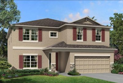 1584 Leaf Flower Lane Lutz FL 33558