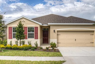 31446 Tansy Bend Wesley Chapel FL 33545