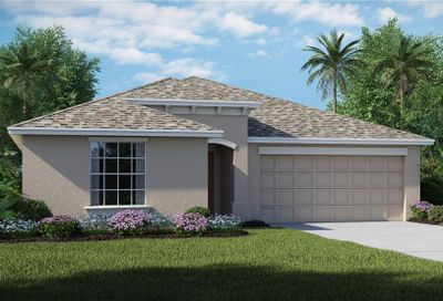 1747 Broad Winged Hawk Drive Ruskin FL 33570