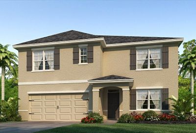 30989 Summer Sun Loop Wesley Chapel FL 33545