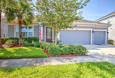 6407 Seasound Drive Apollo Beach FL 33572