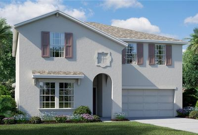 10228 Strawberry Tetra Drive Riverview FL 33578