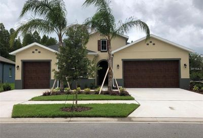 1670 Whitewillow Drive Wesley Chapel FL 33543