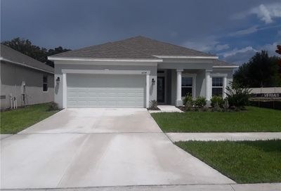 16724 Mooner Plank Circle Wimauma FL 33598