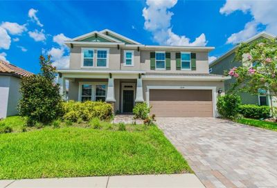 11824 Frost Aster Drive Riverview FL 33579