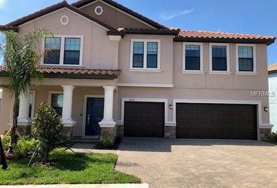12020 Cinnamon Fern Drive Riverview FL 33579