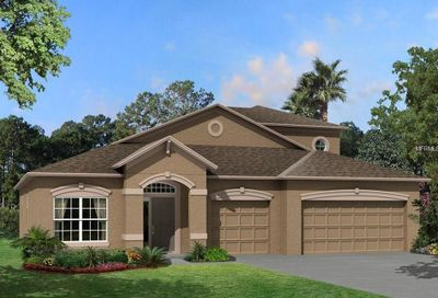 8227 Bluevine Sky Lane Land O Lakes FL 34637