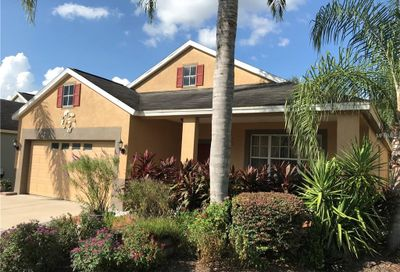 11016 Newbridge Drive Riverview FL 33579