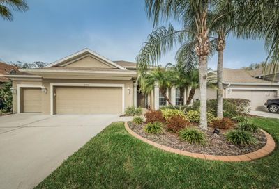 13318 Sullivan Manor Court Dover FL 33527