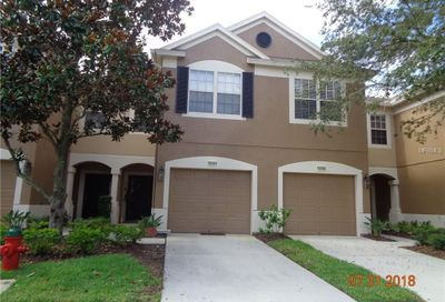 10141 Haverhill Ridge Drive Riverview FL 33578