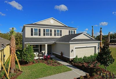 7828 Red Hickory Place Riverview FL 33578