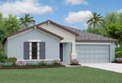 905 Zone Tailed Hawk Place Ruskin FL 33570