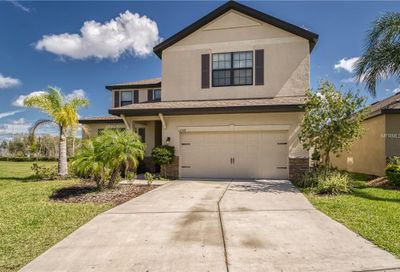 12518 Ballentrae Forest Drive Riverview FL 33579