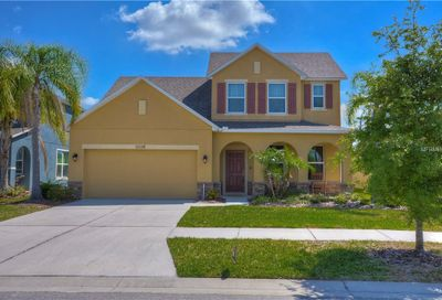 13338 Palmera Vista Drive Riverview FL 33579