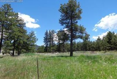 Tbd Highway 67 Highway Woodland Park CO 80863