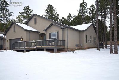 1161 Ptarmigan Drive Woodland Park CO 80863