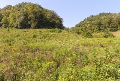 72 .68ac South Fork Road Whitleyville TN 38588