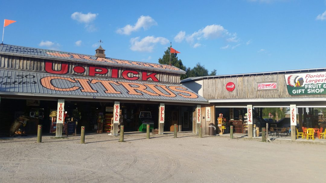 Fruit Stand and Old Time Country Store