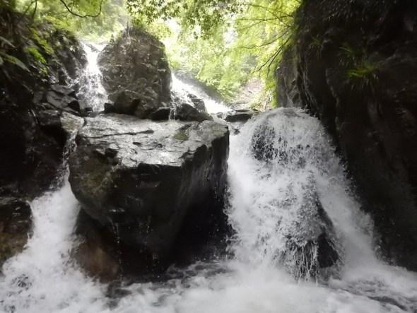 リバートレッキング シャワークライミング キャニオニング 丹沢 秦野 神奈川 ガイド 川遊び ツアー