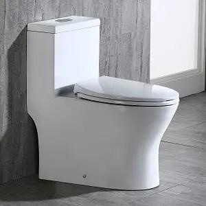 WoodBridge T-0032 Toilet Review