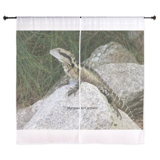 water_dragon_1_curtains