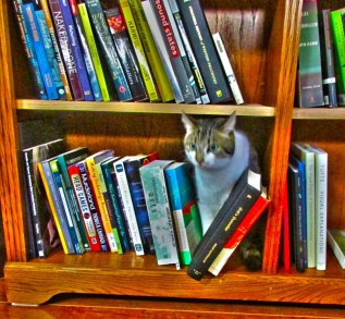buster-books