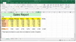 ADMNEXC301101 Excel Training - Identifying the Excel Environment