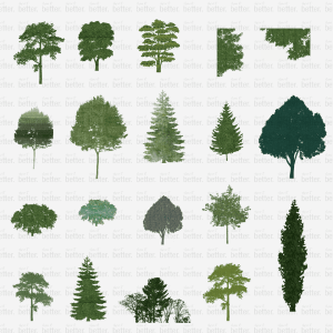 PATTERNED TREES PACK