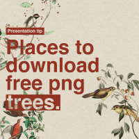 4 places to download free png trees.