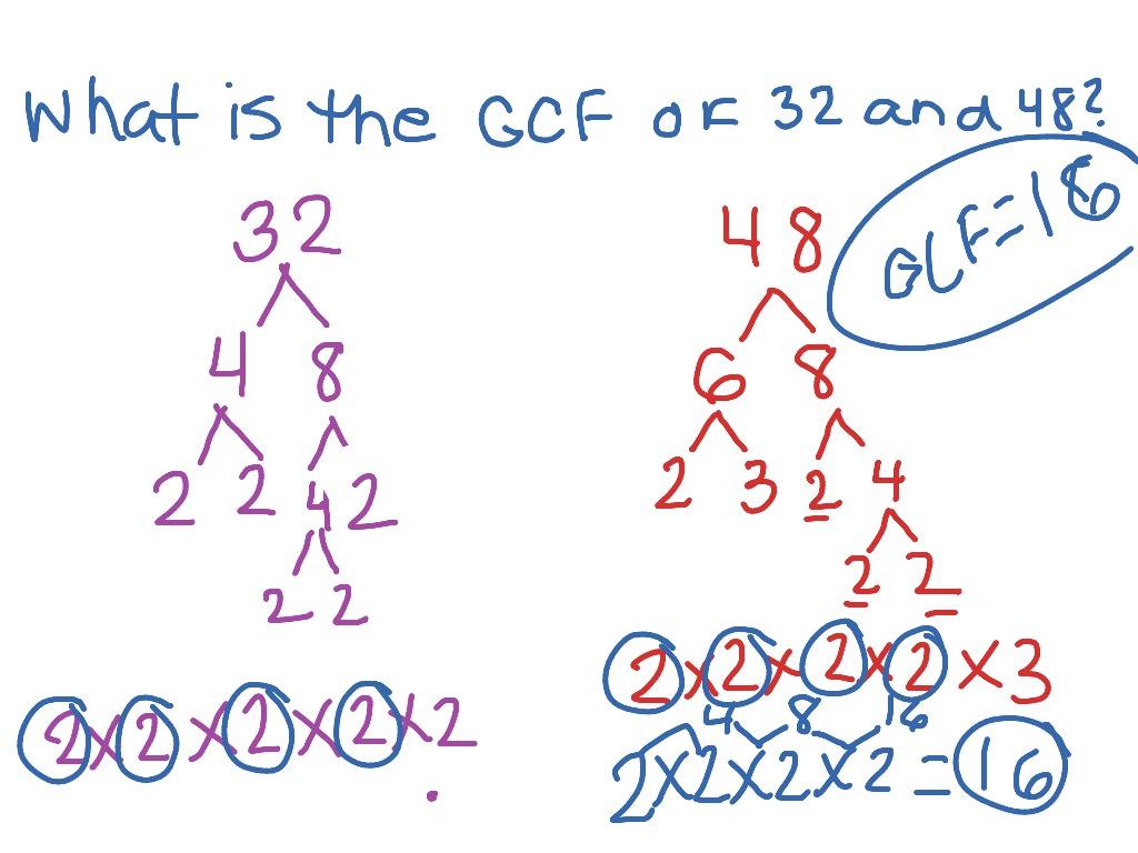 Factoring Greatest Common Factor Worksheet