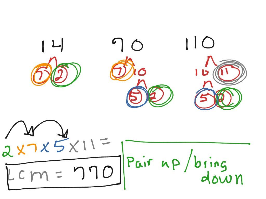 Worksheet Factor Tree Worksheet Fun Worksheet Study Site