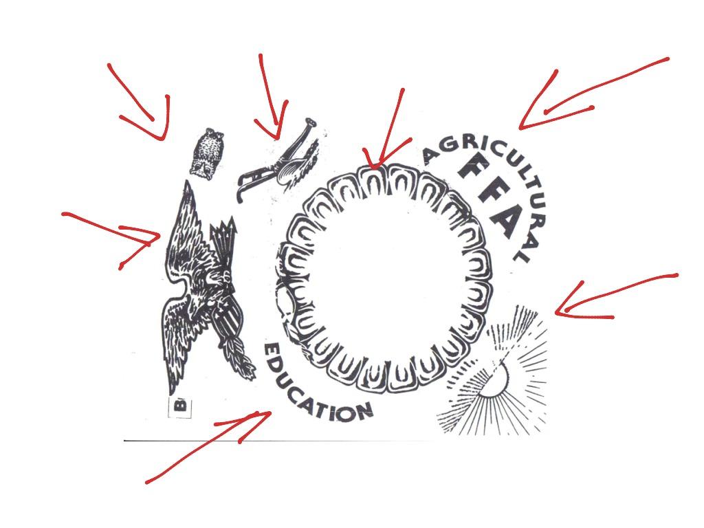 The Parts Of An Ffa Emblem