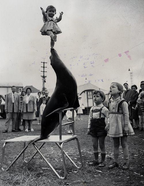 "alt=""circus history"""
