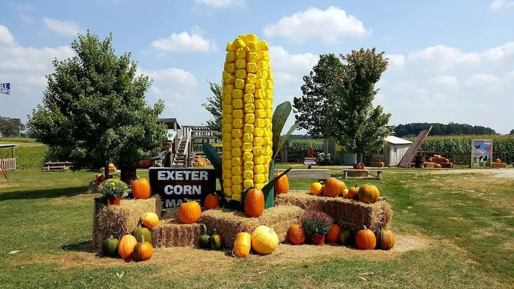Exeter Corn Maze Everything Fall & Halloween in One Spot