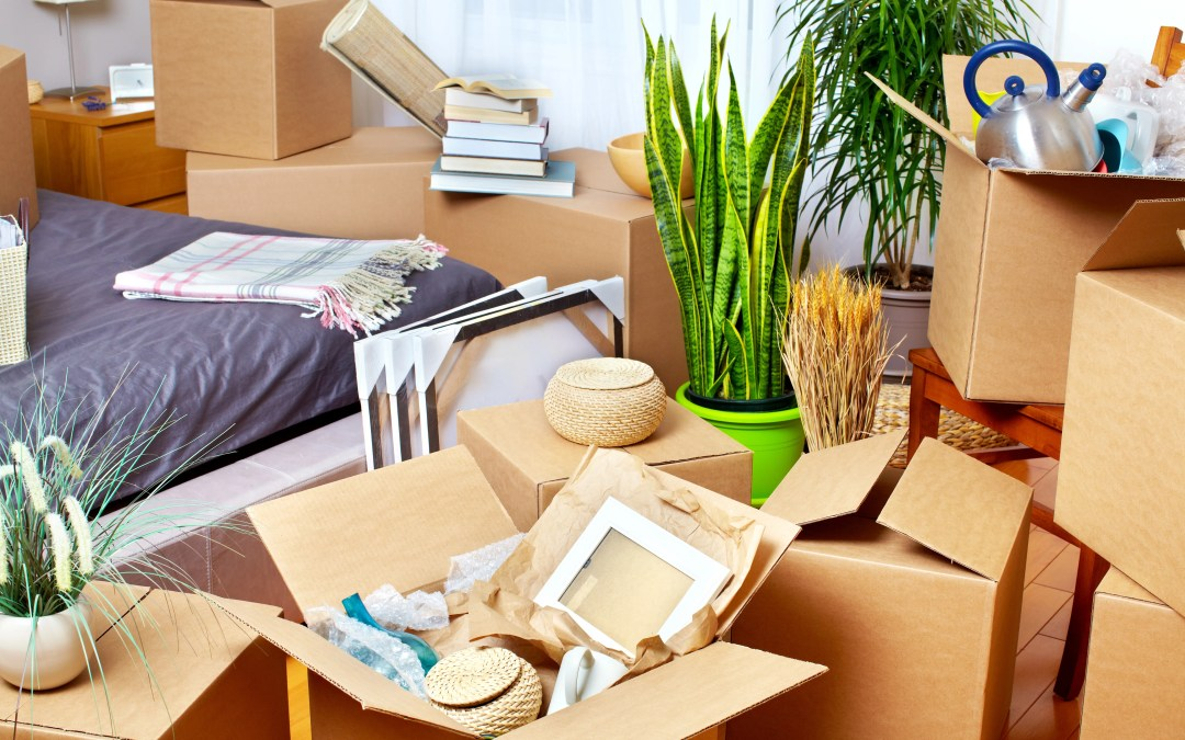 HomeWise: 7 Tips to De-clutter Your House