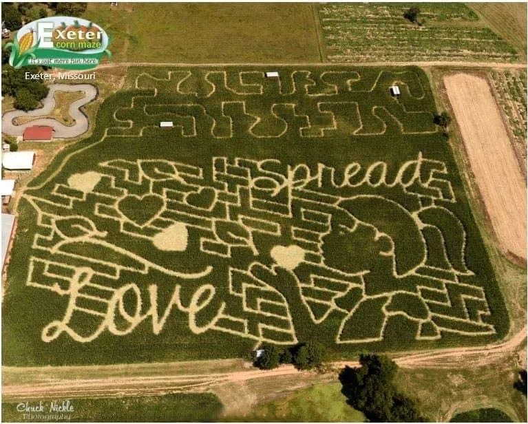 Exeter Corn Maze  Eight Acres of Fun for the Entire Family