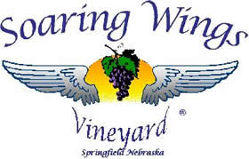 Soaring_Wings