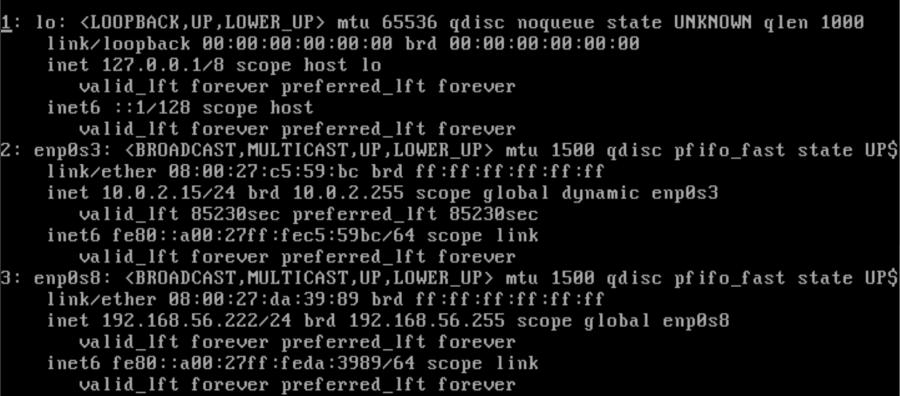 Salida de interfaz de red Linux
