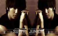 """Super Junior """"No Other"""" Yesung"""