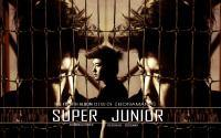 "Super Junior ""No Other "" ShinDong"