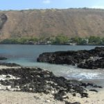 Adventures in Kealakekua Bay
