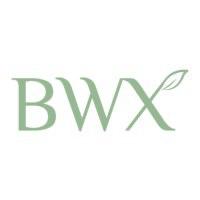BVX logo