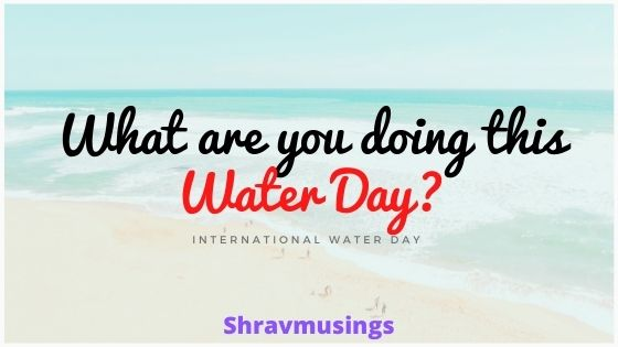 Water Day, International Water Day 2020, Water Day theme, Water Day Pledge, Kids Pledge, Kid Blogger, Chennai Blogger, Shravmusings