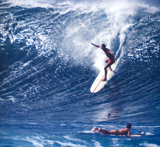 Hobie Phil Edwards Model (Part 1): A Shred Sledz Deep Dive