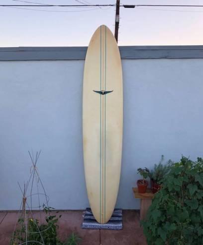 Skip Frye Egg Longboard 2